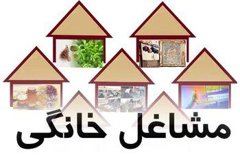 رونمایی از برنامه توسعه ملی شغل های خانگی